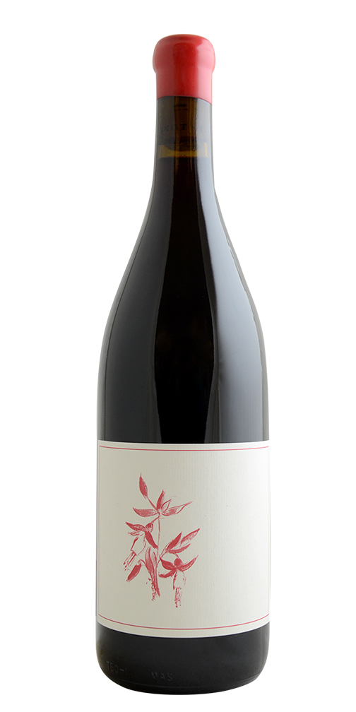 "Arnot-Roberts ""Heaven and Earth"" Pinot Noir"